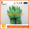 Ddsafety 2017 зеленых перчаток сада хлопка с задней частью Coccinella печатание