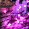 Het Konijn LEIDENE van de op batterijen Dag van Pasen steekt de Lichten van het Koord van de Decoratie van het Huwelijk van de Partij van de Viering van het Koord aan