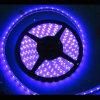 코드 LED 지구 빛 5050 SMD