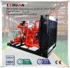 Quilowatt do curso 10 - 600 do elevado desempenho 210mm do gerador do gás natural