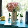 Цилиндрическая ваза цветка стеклоизделия с картиной воздушного пузыря