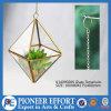POT di fiore della decorazione della casa della pianta del metallo dell'oro che appendono il Terrarium di vetro della pianta