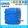 Ano de Série do Motor de laminação de Slip Ring Motor elétrico de 1.500 KW