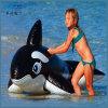 아이들 거대한 팽창식 장난감 수영장 부유물