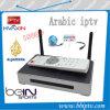 Casella araba di vendita calda HD800 di IPTV
