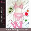 女性のCupless Lace Bra Garter BeltおよびThong Set (DY01-019c)