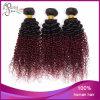 3 gruppi di due toni del tessuto colorato riccio crespo dei capelli