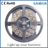Weicher Streifen der LED-Lampen-SMD2835 LED