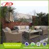 テラスの家具の藤のソファー