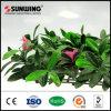 تصميم جديدة يترك اللون الأخضر رخيصة اصطناعيّة سياج سياج مع زهرات خارجيّ