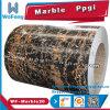 Acero galvanizado prepintado/bobina de acero cubierta color