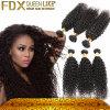 Выдвижения курчавых волос самых лучших человеческих волос девственницы качества бразильских Weft