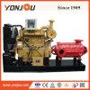 D-Serien-elektrischer Strom-horizontale mehrstufige zentrifugale elektrische landwirtschaftliche Hochdruckbewässerung-Dieselwasser-Pumpe