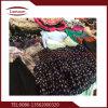 Дешевые используется одежду, экспортируемых в Конго и в Африке
