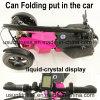 48V entfernen die Batterie, die elektrischen Roller mit 3wheels faltet