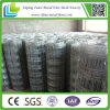 Selling를 위한 최신 Dipped Galvanized Livestock Wire Fence
