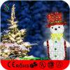 セリウムが付いているスノーマンの装飾のクリスマスの照明は承認した