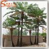Traje por atacado da palmeira do Fern de Atificial dos fornecedores para a venda