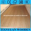 1220 * 2440 * 3.5mm Línea Recta / Rotary de teca dorada de madera contrachapada Fancy