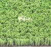 厚いコオロギの人工的な草(C10151)