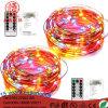Van het LEIDENE het Licht 10m100LEDs Koper RGB met Ver Controlemechanisme voor de Decoratie van Kerstmis Ooutdoor
