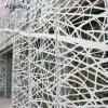 Parete di alluminio cinese del rivestimento della tenda della facciata