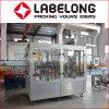 Machine de remplissage de liquide de vente chaude/machine de remplissage d'emballage de l'eau