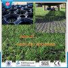 Stuoie dell'erba di slittamento della formica di agricoltura, stuoia di gomma dell'erba dei Anti-Batteri