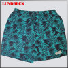 Shorts della scheda degli uomini per usura di estate