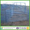 Manufatura de China da pena da multidão de /Round do painel/painel da cabra da porta da curva do gado