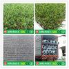 Машина для просушки для травы и искусственная дерновина для сада