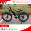 4.0 인치 중앙 모터 드라이브 MTB 500W 바닷가 눈 산 E 자전거 성숙한 페달 엔진 전기 자전거
