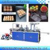 Automatisches Thermoforming, das Maschine für Plastikwegwerftellersegment-Kasten-Deckel-Kappen bildet