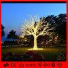 결혼식 훈장은 LED 분지 크리스마스 나무를 주문을 받아서 만든다