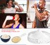 Polvere naturale del proteina del siero della transferrina umana di nutrizione della polvere della proteina