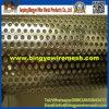 Fábrica direta do metal perfurado do engranzamento (ISO)