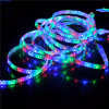 Outdoor Christmas Strip LightsのためのSMD 5050 LED Flexible Strip