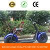 18 * 9.5 Ewasp Citycoco Scooter Elétrico 1000W Harley Mini Eletro Eletrônico Mini Motocicleta Chopper para Venda