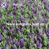 22мм высокой плотности с сиреневыми вставками искусственных травяных (SUNQ-HY00066)