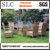 庭表のセットまたはガーデン・チェアおよび表または藤の椅子(SC-B1012)