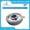 물 수영 샘 LED 빛의 밑에 스테인리스
