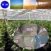 Grado del fertilizzante del residuo 80% dell'amminoacido