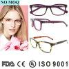 Geen MOQ Eyewear 2016 Populaire Kleurrijke Optische Frames van Oogglazen