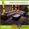 Mobilia stabilita del giardino del sofà sezionale esterno stabilito della mobilia del sofà del rattan