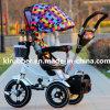 Triciclo para crianças Trike com canopy colorido