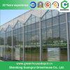Heißer Verkauf Multi-Überspannung Venlo Typ Glas-Gewächshaus