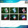 Drapeaux faits sur commande de main, drapeaux tenus dans la main de bâton (NF10F01007)