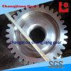 Standard ISO Bull Spur dell'ingranaggio di trasmissione