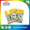 Kundenspezifische Ablagerungs-Drucken-Farben-Papierkarte