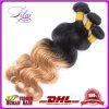 完全なCuticle VirginブラジルのHair Weave BundlesかブラジルのOmbre Hair